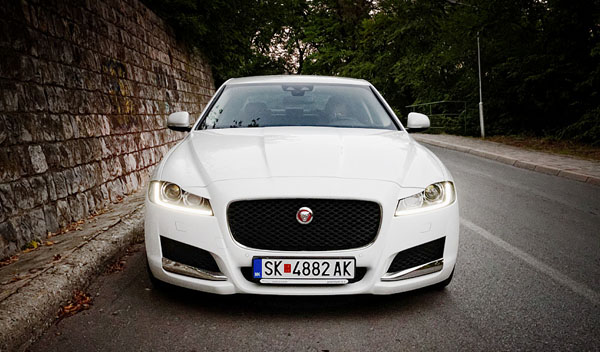 jaguar-xf-face