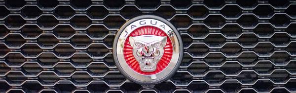 jaguar-xf-interior-exterior-badge